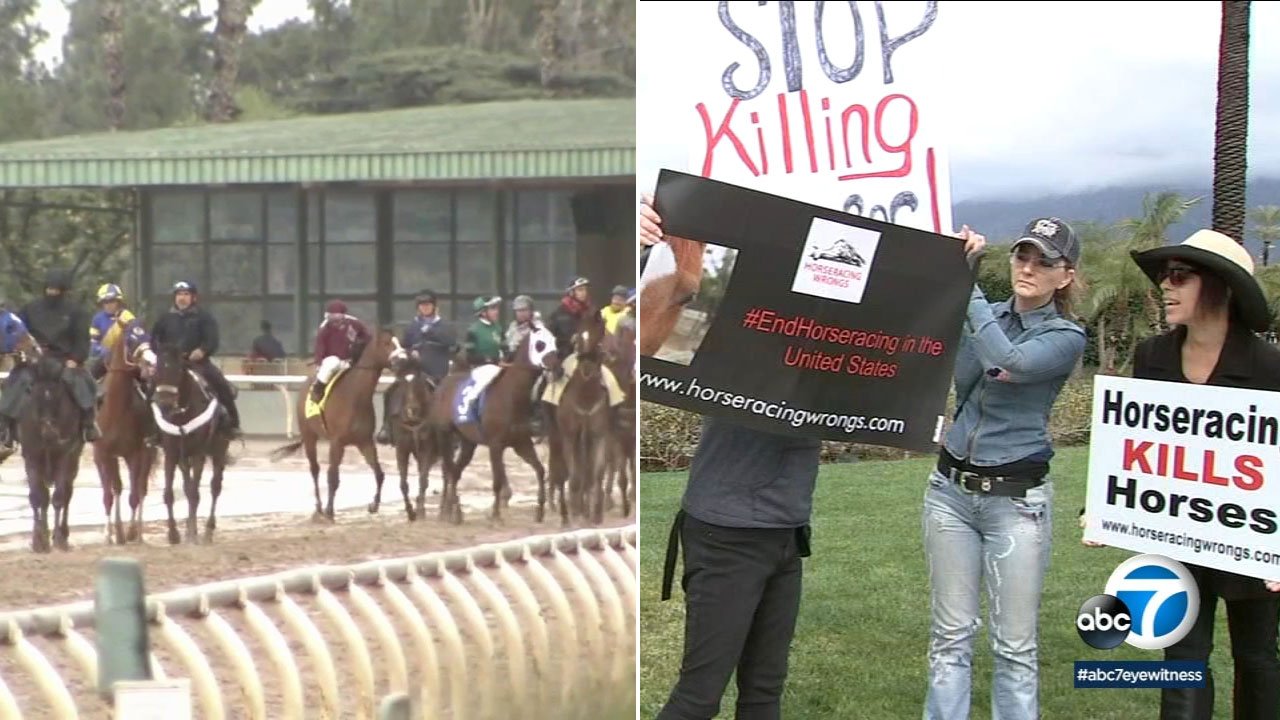 Santa Anita Park Horse Deaths Racing Suspended