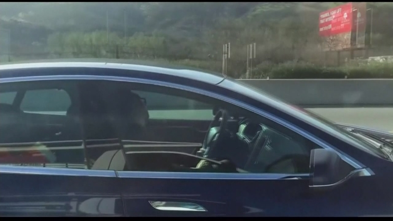 Cell video shows Tesla driver asleep while on autopilot