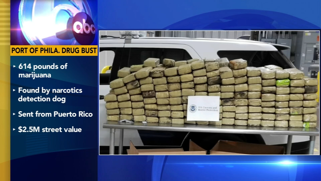 Feds seize roughly 450 kilos of cocaine worth millions at