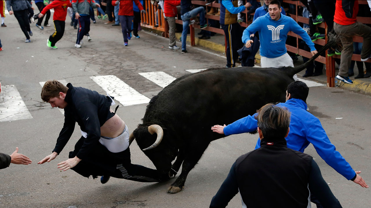 Benjamin Miller gored by a bull