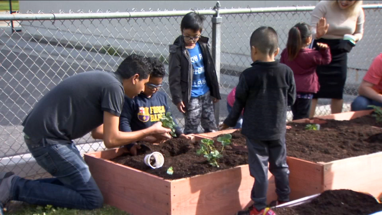 New garden will help Kirk Elementary School students learn valuable lessons