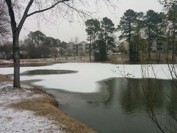 """<div class=""""meta image-caption""""><div class=""""origin-logo origin-image none""""><span>none</span></div><span class=""""caption-text"""">A photo of the Auduban Lake in Durham, which is partially frozen. (WTVD Photo/ ABC11 Eyewitness)</span></div>"""