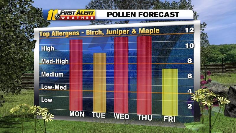 Pollen remains spring-like despite cooler temperatures