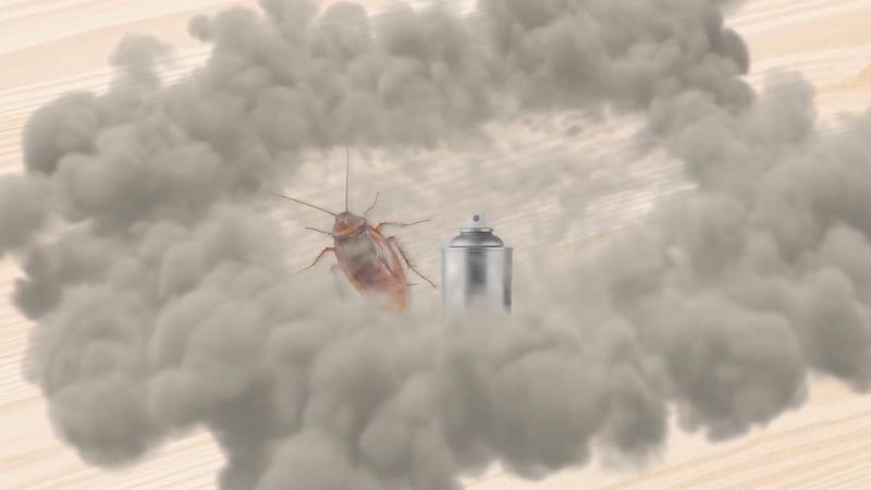 Bug bombs don't work, study says