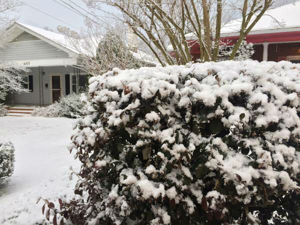 """<div class=""""meta image-caption""""><div class=""""origin-logo origin-image none""""><span>none</span></div><span class=""""caption-text"""">ABC11 Eyewitness viewers send in their pictures from the winter storm (WTVD Photo/ EyeWitness Photo)</span></div>"""