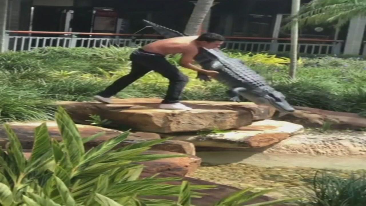 Shirtless teen arrested after wrestling fake alligator