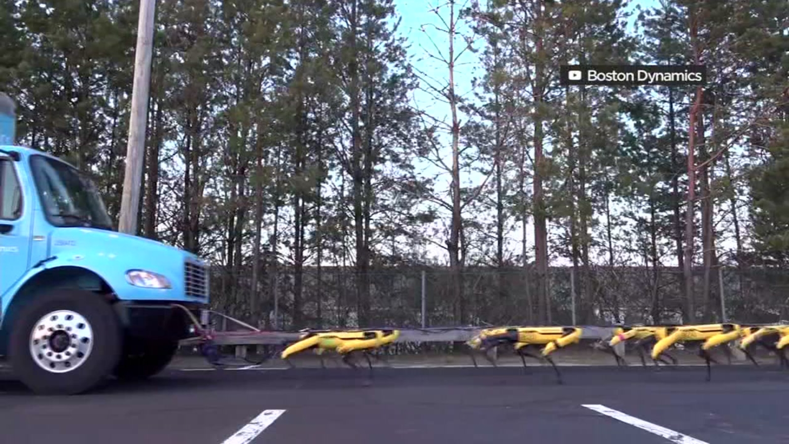 WATCH THIS: Team of robotic dogs pull massive diesel truck