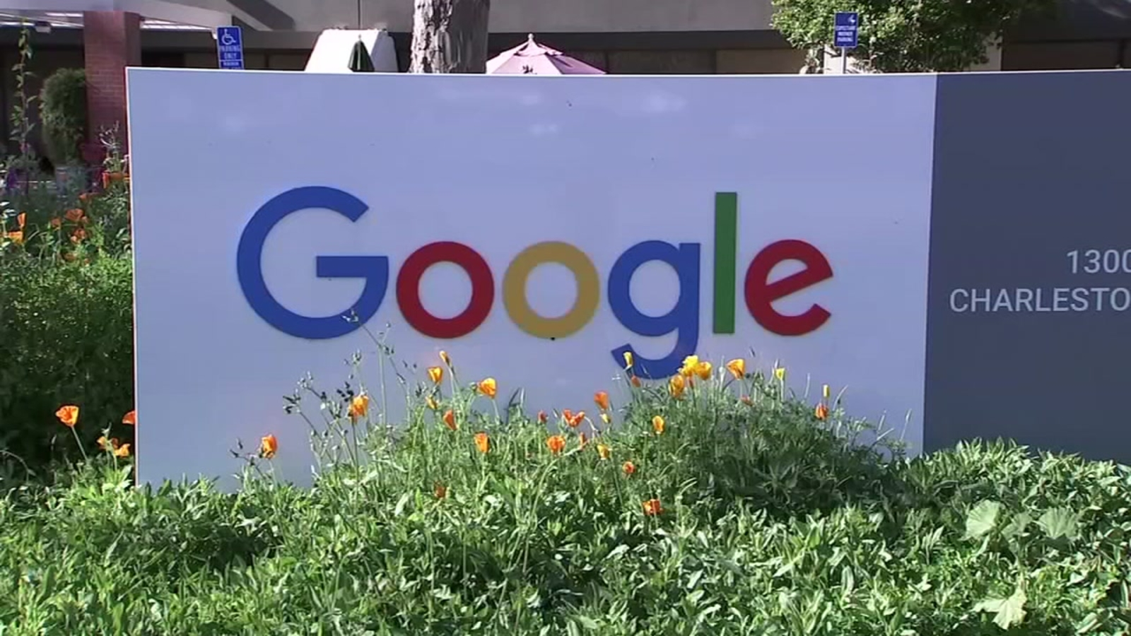 Health investigation into measles case at Google campus spans two counties
