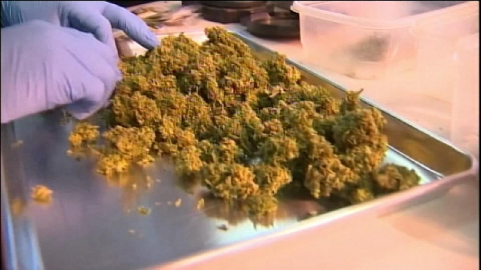 Marijuana festival to be held in Andersonville on 4/20