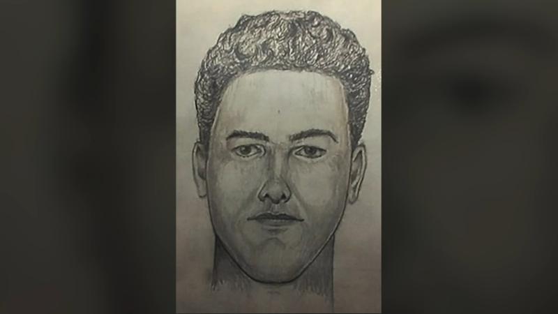 New video, sketch, audio of Delphi, Indiana, double murder suspect released