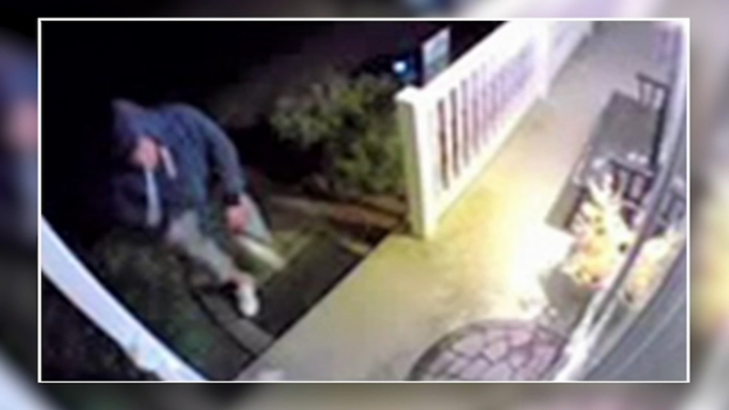 Suspect behind string of lawn ornament thefts strikes again