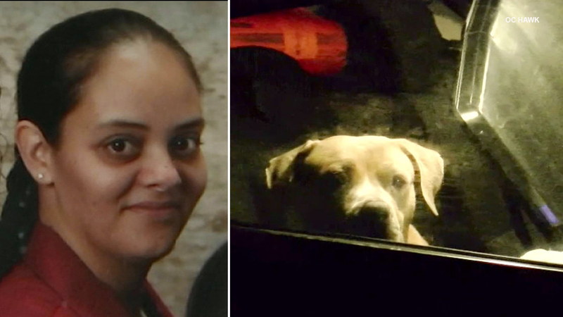 Woman struck, killed by car on 91 Fwy after exiting vehicle to check on dogs