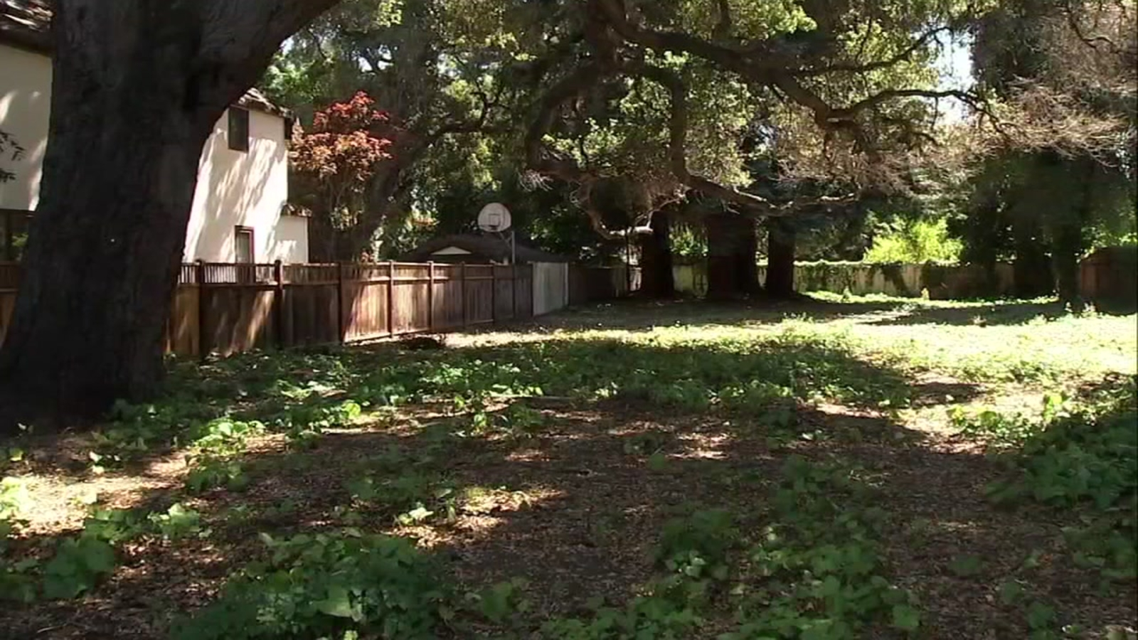Empty Palo Alto lot listed for $9 Million reflects red hot real estate market