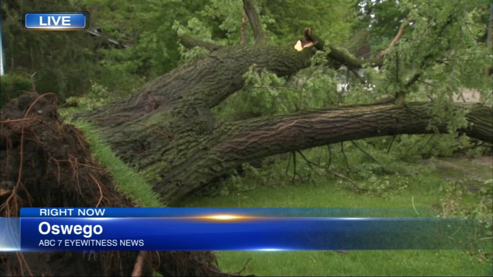 Chicago Weather: Cleanup underway after storms drop hail, topple trees