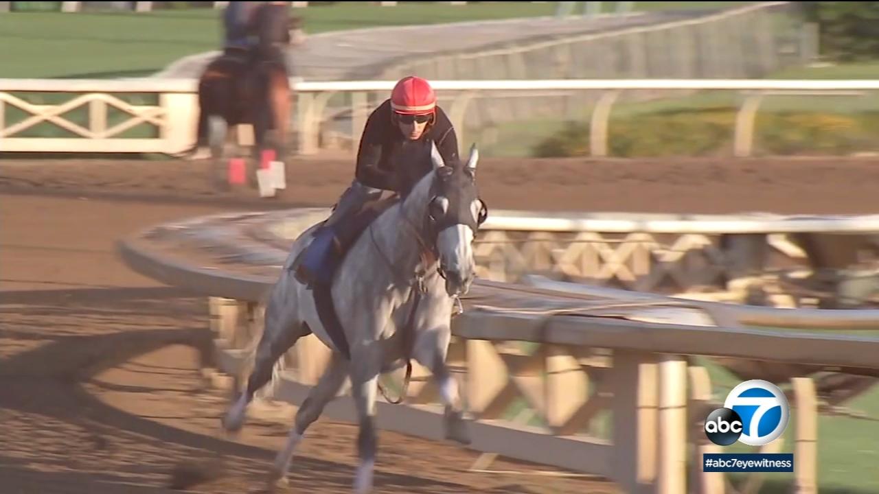 Jockeys, racehorse owners spar with animal advocates amid string of horse deaths at Santa Anita Park