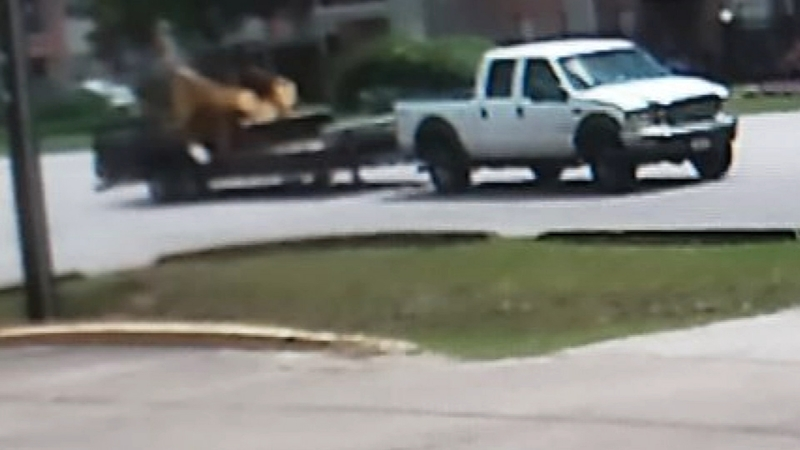 Family gets rude welcoming to Houston from thieves