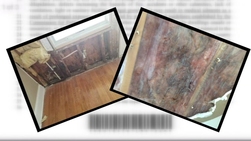NC bill: Landlords will have to fix mold issues if they're health hazard