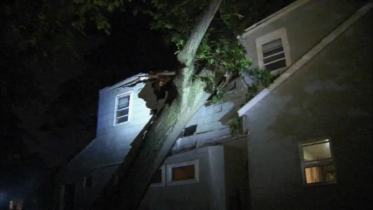 Storm brings down trees, leaves residents without power in Bucks