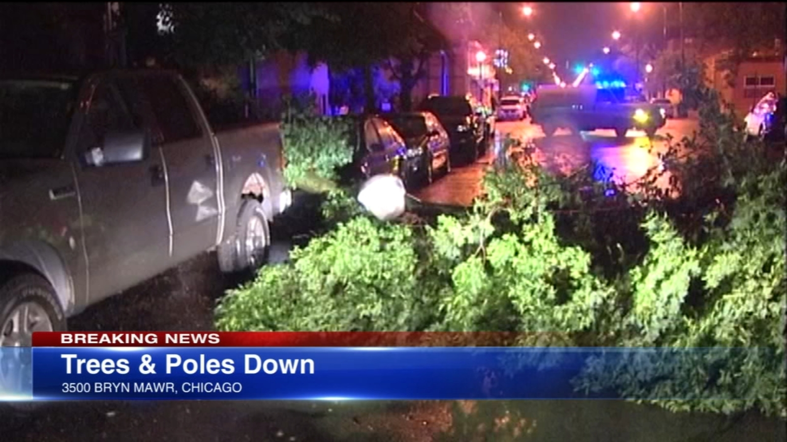 Chicago Weather: High winds knock down trees on NW Side; Beach Hazard in effect