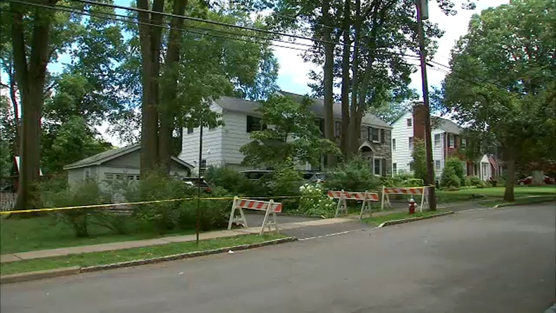 Mother, 6-month-old son struck by large tree branch in Chatham, New Jersey