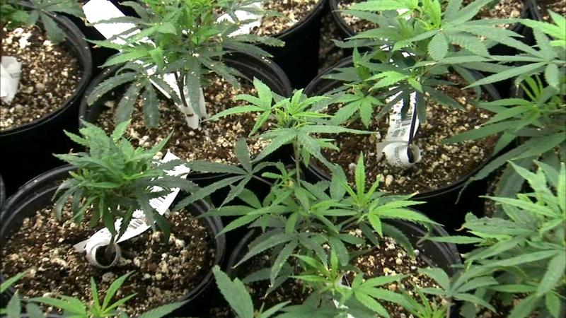 Despite legalization, public marijuana use remains prohibited in Illinois