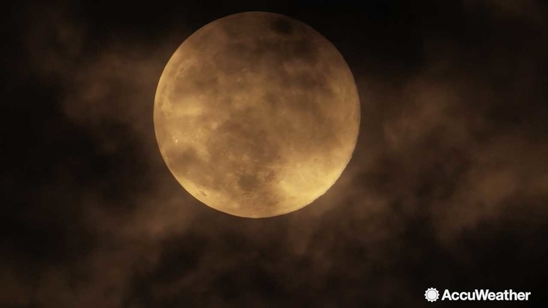 Eclipse Solar 2019 New York Astronomy events for July 2019: Total solar eclipse, black moon