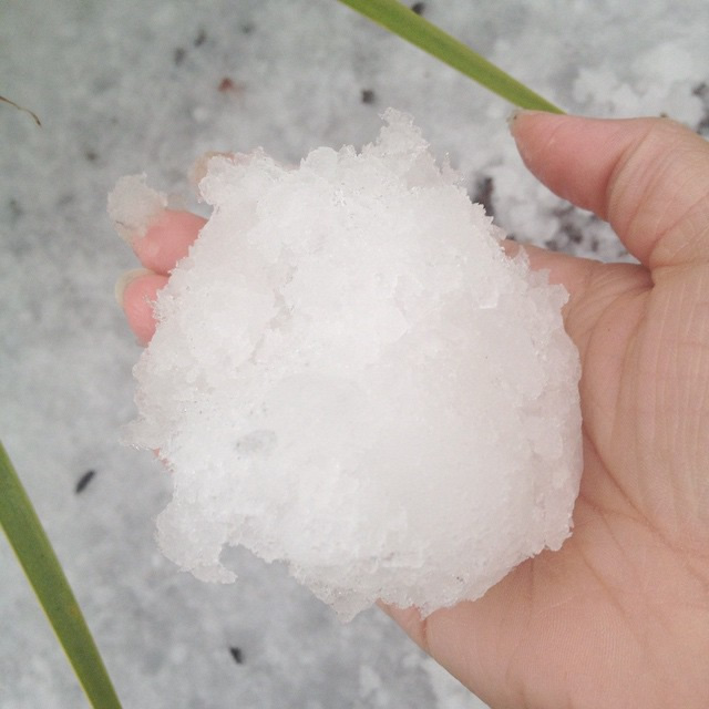 "<div class=""meta image-caption""><div class=""origin-logo origin-image kgo""><span>KGO</span></div><span class=""caption-text"">Hail fell in San Jose, Calif. on Feb. 28, 2015. (Photo submitted by Amy via uReport)</span></div>"