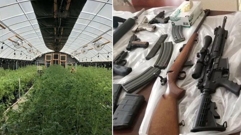 Sheriff's deputies seize 14 9 tons of pot, 37 firearms in Perris