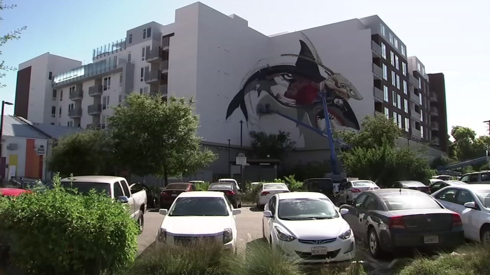 Artist known as 'Nychos' creates massive mural marking Sharks Territory in San Jose