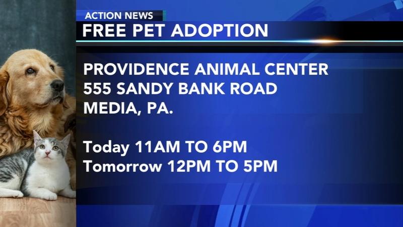 Providence Animal Center In Media Holding Free Pet Adoption Event 6abc Philadelphia