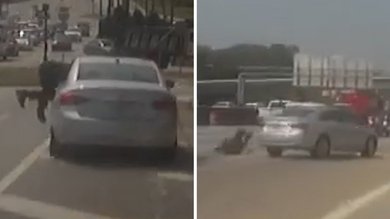 Officer dragged onto freeway during traffic stop, tumbles into traffic