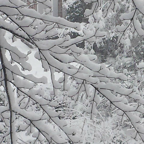 """<div class=""""meta image-caption""""><div class=""""origin-logo origin-image none""""><span>none</span></div><span class=""""caption-text"""">Photos of the snow from Eyewitness News viewers on March 5, 2015</span></div>"""