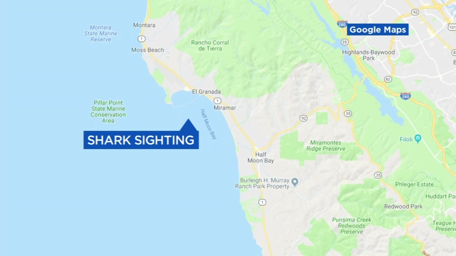 Great white shark spotted off coast of Half Moon Bay