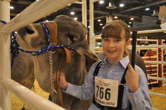"""<div class=""""meta image-caption""""><div class=""""origin-logo origin-image none""""><span>none</span></div><span class=""""caption-text"""">A Brahman owner shows her entry in this year's Open Cattle competition (KTRK Photo/ Amanda Cochran)</span></div>"""