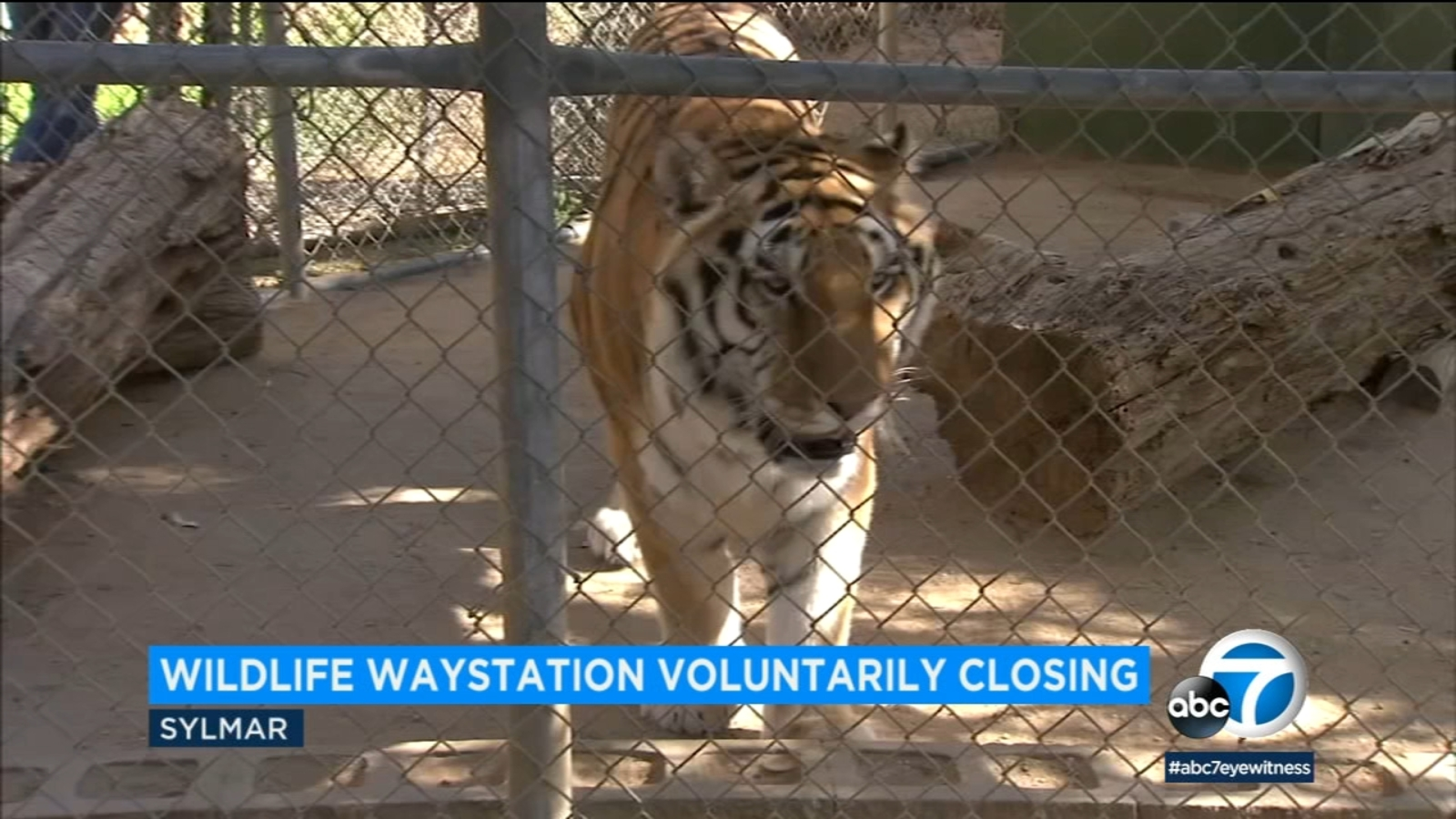 Exotic animals to be relocated as Wildlife Waystation shuts down