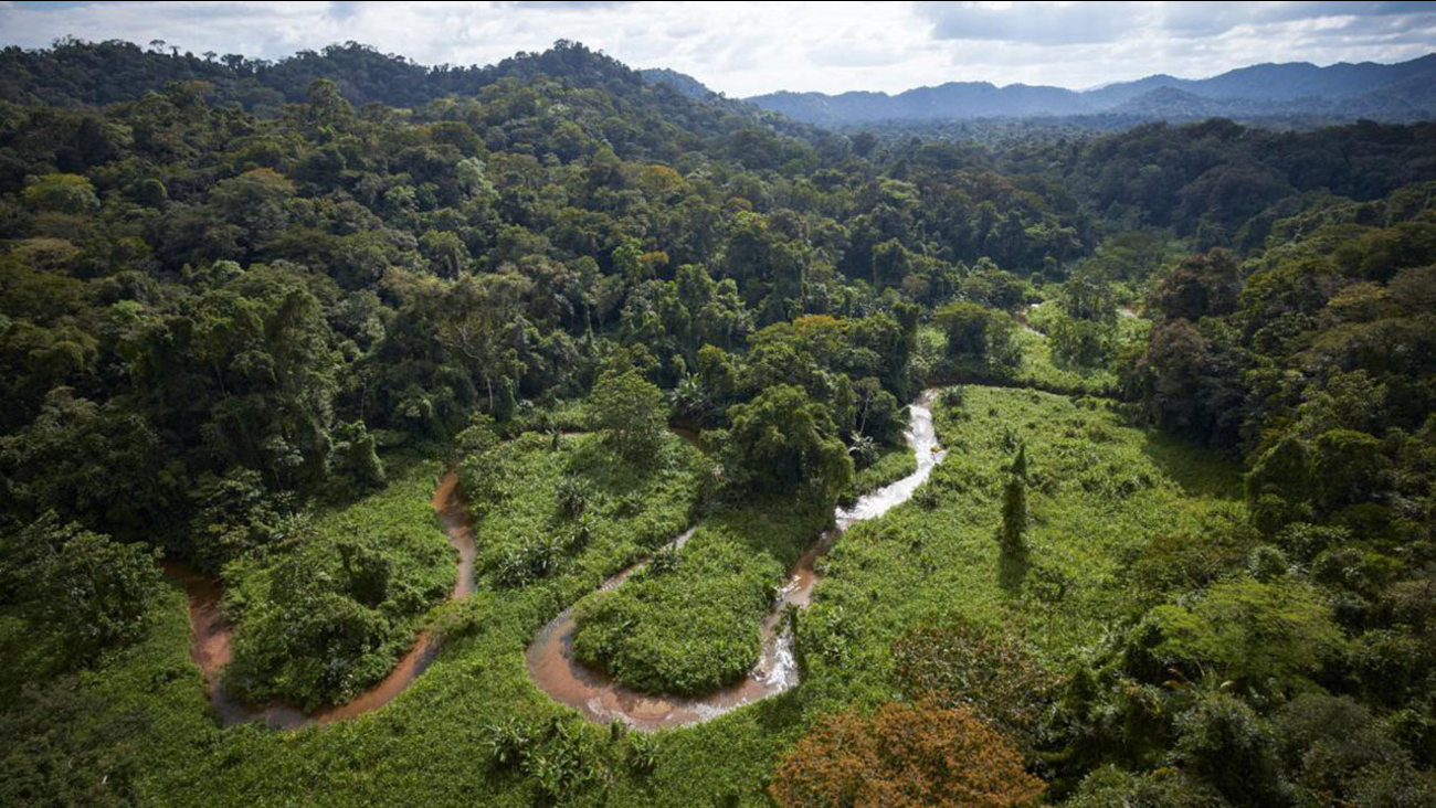 A stream winds through part of an unexplored valley in Mosquitia in eastern Honduras, a region long rumored to contain a legendary 'White City.'