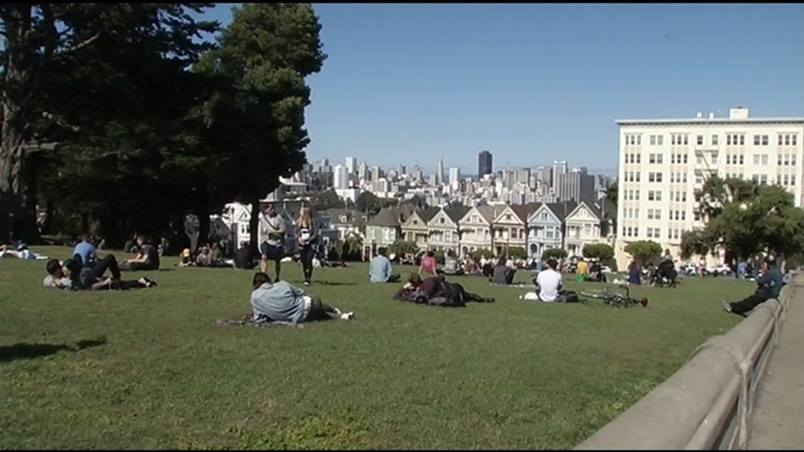 Study: Sunny day in park as good as Christmas