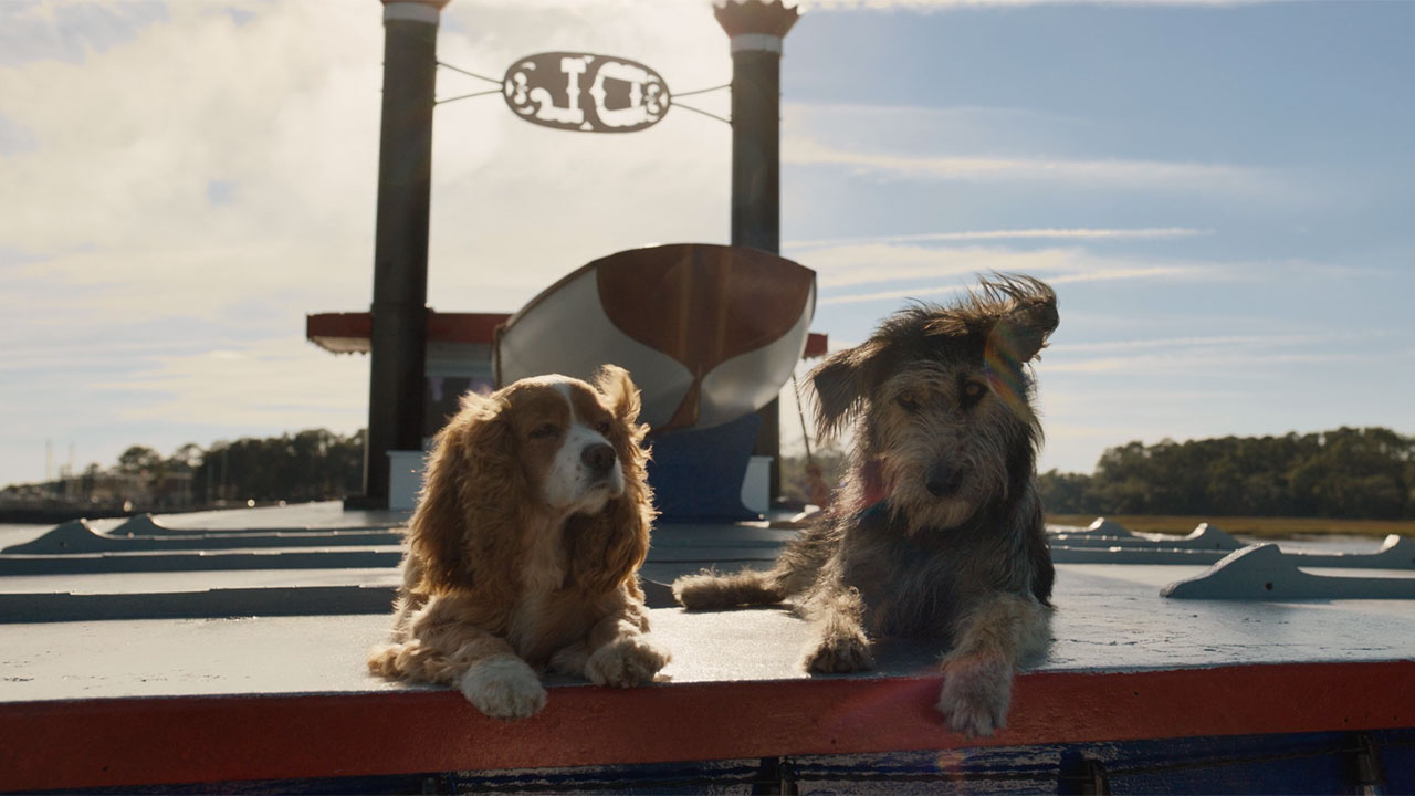 D23 Trailers Lady And The Tramp Noelle Trailers For Disney Plus Streaming Service Released Abc7 New York