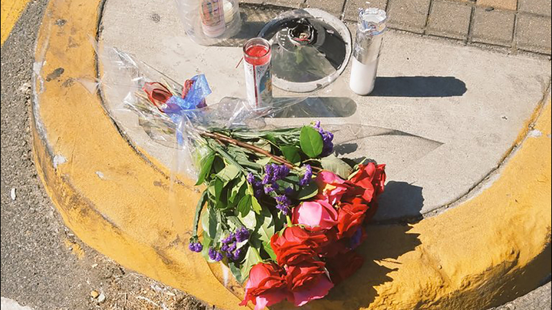 Victim ID'd in deadly hit-and-run in San Jose