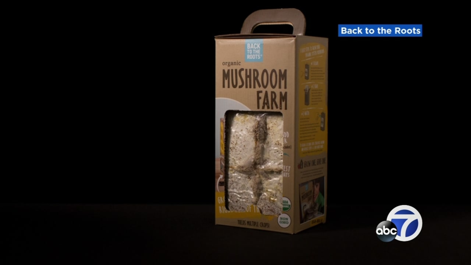 FINNEY'S FRIDAY FREE STUFF: Mushroom growing kits from Back to the Roots  and tickets to Family Day at Oktoberfest by the Bay!