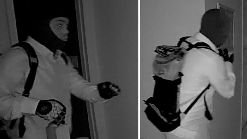 2 men caught on camera breaking into Mount Sinai home