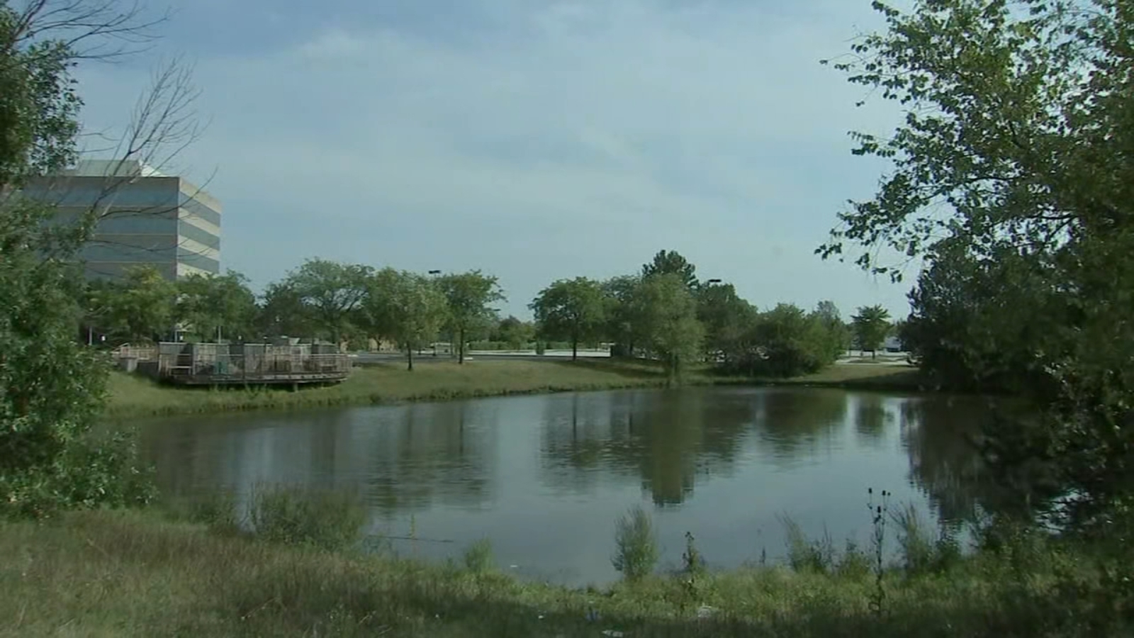 Body of man pulled from pond in south suburban Matteson, police say