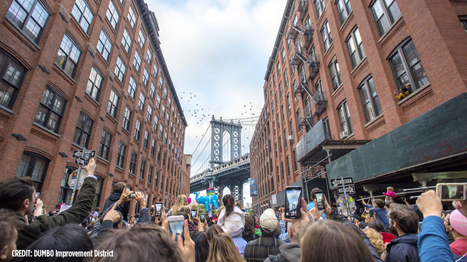 Thousands of elephants to 'fly' in DUMBO, Brooklyn next week