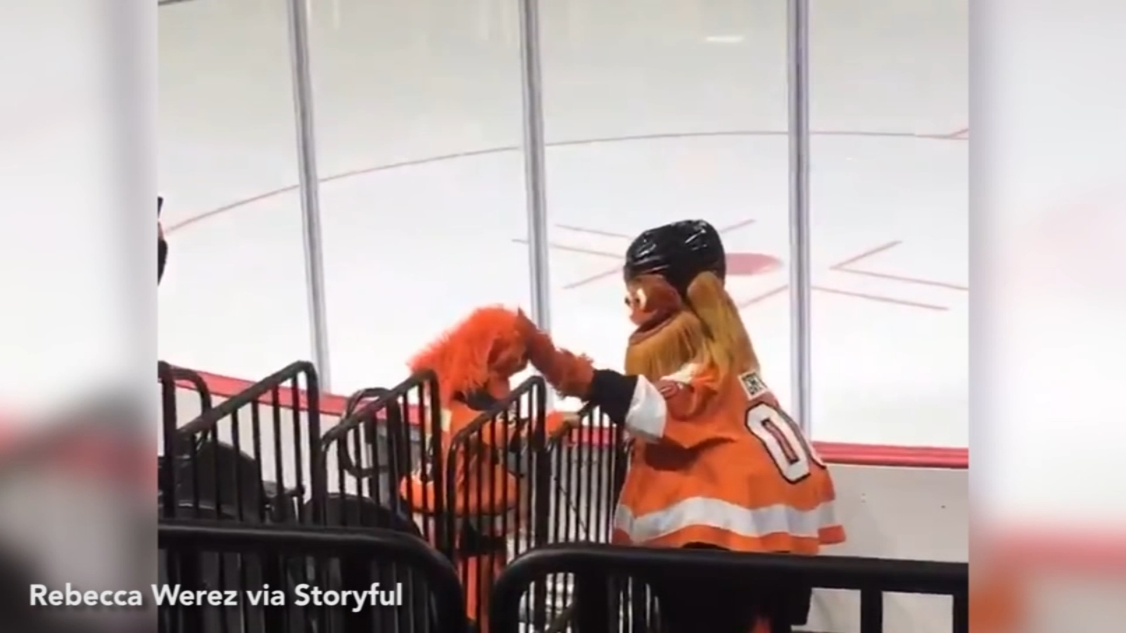 Little Gritty meets big Gritty in adorable video