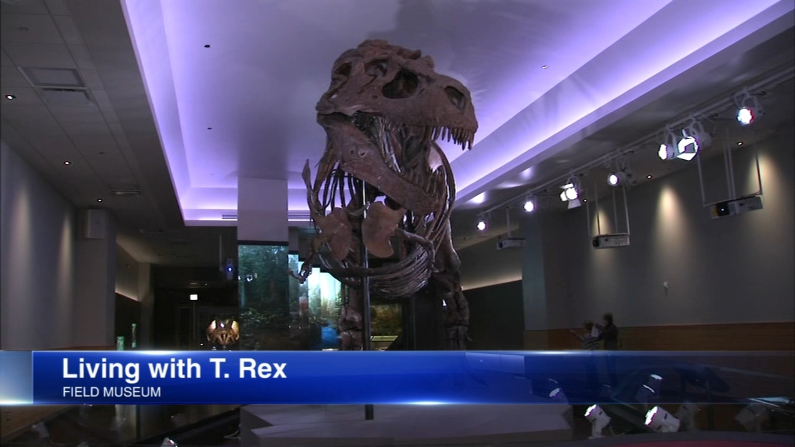 New Field Museum exhibit lets you smell the breath of Sue the T. Rex
