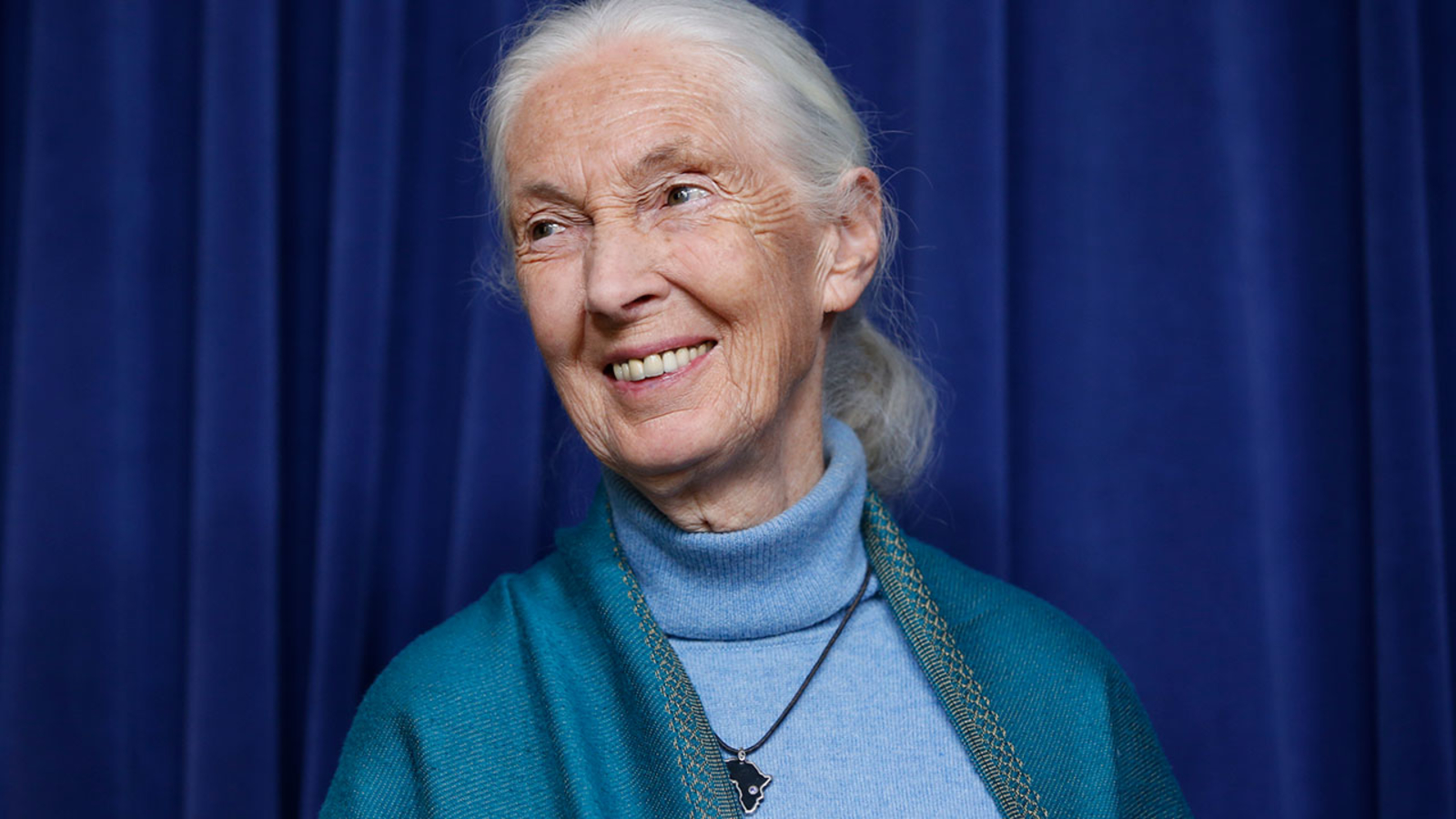 Dr. Jane Goodall honored at Walt Disney Family Museum in San Francisco