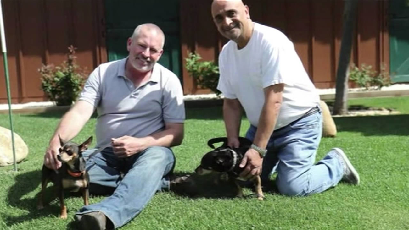 A dog that was tossed from a moving car in Watsonville, Calif. on Feb. 20, 2015 has found a new home.