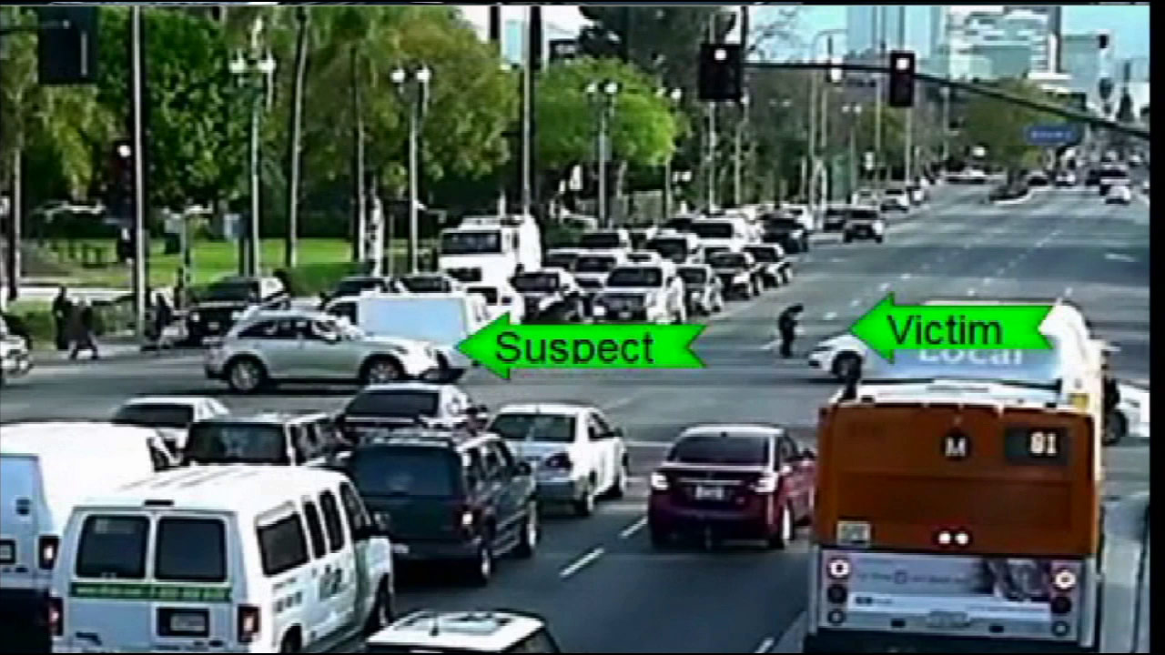 Surveillance video shows an elderly pedestrian being struck by a hit-and-run driver near the University of Southern California on March 16, 2015.