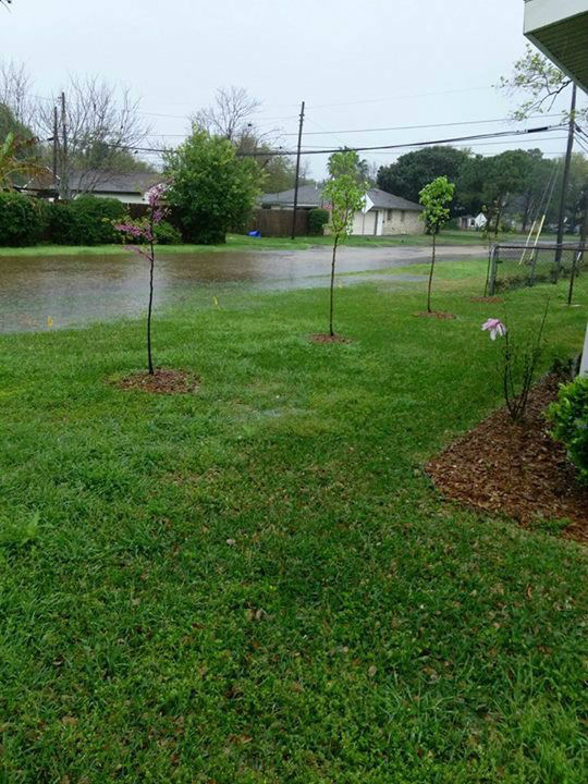 "<div class=""meta image-caption""><div class=""origin-logo origin-image none""><span>none</span></div><span class=""caption-text"">These are images viewers sent to us from storms on Saturday, March 21.  If you have pics or video, email them to us at news@abc13.com</span></div>"