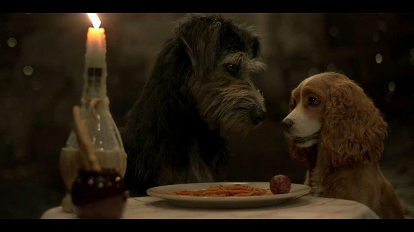 Live Action Lady And The Tramp To Debut On Disney Abc7 New York